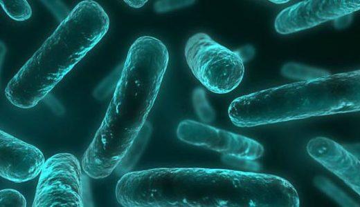 病院で薬として処方される抗生物質は人間にも影響があるの?