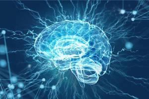 わずか9歳で大学を卒業する天才ローラン君と凡人の脳構造の差とは?