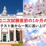 【共通テスト後】国公立の二次試験直前の1か月でやるべき勉強プラン